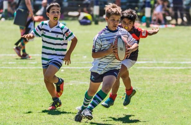 fixture rugby 11 Nov